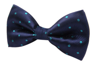 Mens Polka Dot Bow Ties