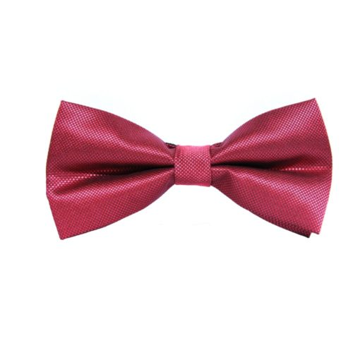 Bow Tie Gift for Men