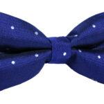Polka Dot Bow Tie for Men