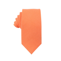 Peach Orange Business Tie